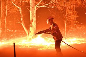 Feuerwehrmann beim Löschen von Waldbränden